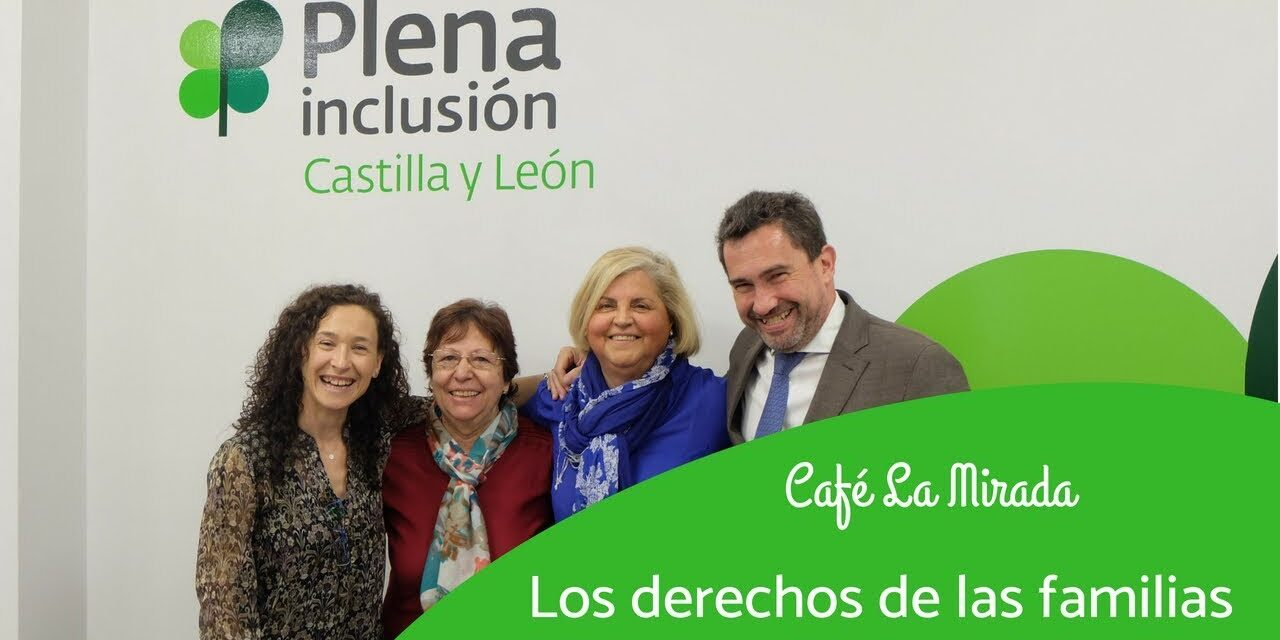 https://www.proyectojoven.org/wp-content/uploads/2020/10/Plena-inclusion-Solidario-Digital-1280x640.jpg